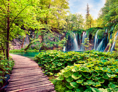 Splendid morning view of Plitvice National Park. Colorful spring scene of green forest with pure water waterfall. Great countryside landscape of Croatia, Europe. Traveling concept background. Stock Photo