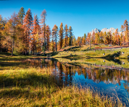 Impressive colors view of Scin lake with yellow larch trees. Colorful sunny scene of Dolomite Alps, Cortina dAmpezzo location, Italy, Europe. Beauty of countryside concept background.