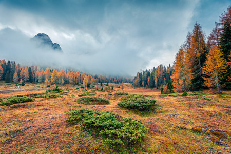 Sunny morning scene of National Park Tre Cime di Lavaredo. Colorful autumn landscape in Dolomite Alps, South Tyrol, Location Auronzo, Italy, Europe. Beauty of nature concept background. Stock Photo