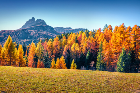Impressive morning view from the top of Giau pass. Colorful autumn landscape in Dolomite Alps, Cortina d'Ampezzo location, Italy, Europe. Beauty of nature concept background.