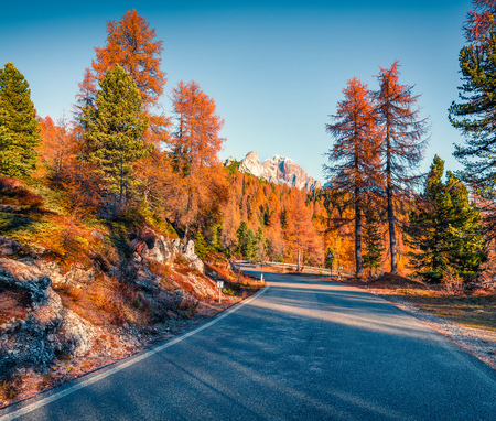 Fantastic sunny view of Dolomite Alps with empty asphalt road and yellow larch trees. Great autumn scene of Giau pass, Italy, Europe. Traveling concept background. Stok Fotoğraf - 113852183
