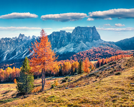 Fantastic sunny view of Dolomite Alps with yellow larch trees. Colorful autumn scene of Ponta dei Lastoi mountain range. Giau pass location, Italy, Europe. Beauty of nature concept background. Stockfoto
