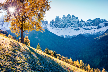 Fantastic view of Santa Maddalena village hills in front of the Geisler or Odle Dolomites Group. Colorful autumn scene of Dolomite Alps, Italy, Europe. Beauty of countryside concept background.