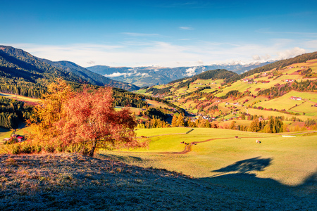 Beautiful autumn view of Santa Maddalena village. Colorful morning landscape of Dolomite Alps, Italy, Europe. Beauty of countryside concept background. Beauty of countryside concept background. Stock Photo