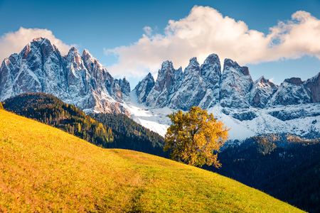 Incredible  view of Santa Maddalena village hills in front of the Geisler or Odle Dolomites Group. Colorful autumn scene of Dolomite Alps, Italy, Europe. Beauty of nature concept background.