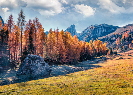 Beautiful sunny view of Dolomite Alps with yellow larch trees. Colorful autumn scene of Ponta dei Lastoi mountain range. Giau pass location, Italy, Europe. Beauty of nature concept background.