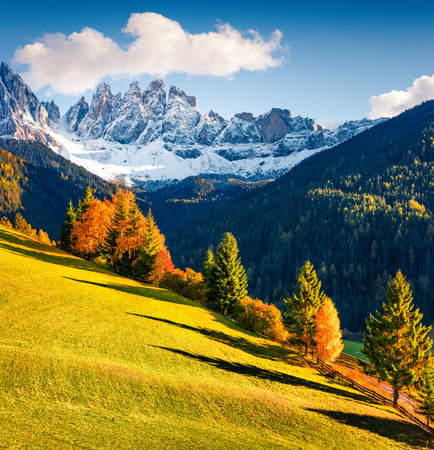 Great view of Santa Maddalena village hills in front of the Geisler or Odle Dolomites Group. Colorful autumn scene of Dolomite Alps, Italy, Europe. Beauty of countryside concept background.