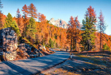 Fantastic sunny view of Dolomite Alps with yellow larch trees. Great autumn scene of mountains. Giau pass location, Italy, Europe. Beauty of nature concept background.