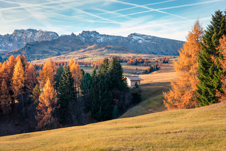 Bright outdoor scene of Alpe di Siusi mountain plateau with beautiful yellow larch trees. Colorful autumn morning in Dolomite Alps, Ortisei locattion, Italy, Europe. Beauty of countryside concept background.