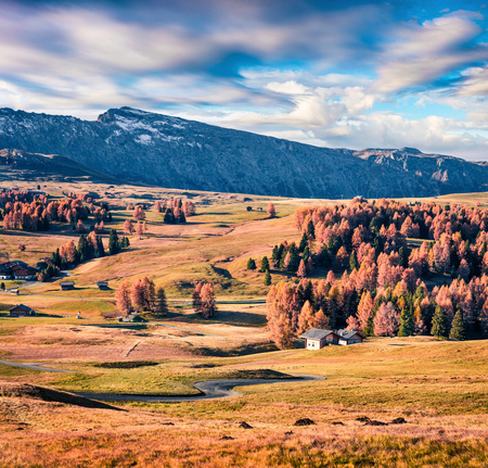 Splendid outdoor scene of Alpe di Siusi mountain plateau with beautiful yellow larch trees. Colorful autumn morning in Dolomite Alps, Ortisei locattion, Italy, Europe. Beauty of countryside concept background.