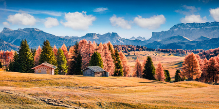 Picturesque outdoor panorama of Alpe di Siusi mountain plateau with beautiful yellow larch trees. Colorful autumn morning in Dolomite Alps, Ortisei locattion, Italy, Europe. Beauty of countryside concept.