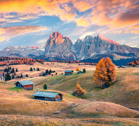 Incredible sunset in Alpe di Siusi mountain plateau with beautiful yellow larch trees and Langkofel (Sassolungo) mountain on background. Colorful autumn evening in Dolomite Alps, Ortisei locattion, Italy, Europe.