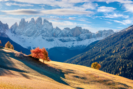 Magnificent view of Santa Maddalena village hills in front of the Geisler or Odle Dolomites Group. Colorful autumn scene of Dolomite Alps, Italy, Europe. Beauty of nature concept background.