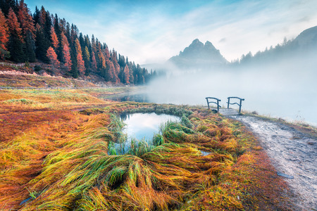 Foggy morning scene on Antorno lake with Tre Cime di Lavaredo (Drei Zinnen) mount. Colorful autumn landscape in Dolomite Alps, Province of Belluno, Italy, Europe. Beauty of nature concept background. Foto de archivo - 116550303