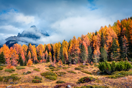 Sunny morning scene of National Park Tre Cime di Lavaredo. Colorful autumn scene of Dolomite Alps, South Tyrol, Location Auronzo, Italy, Europe. Beauty of nature concept background.