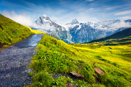 Popular tourist route from the Grindelwald First cableway to the Bachalpsee lake. Schreckhorn and Wetterhorn summit in the morning mist. Green morning scene in the Swiss Bernese Alps, Switzerland, Europe.