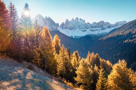 Greatmorning view of Santa Maddalena village hills in front of the Geisler or Odle Dolomites Group. Colorful autumn scene of Dolomite Alps, Italy, Europe. Beauty of countryside concept background.