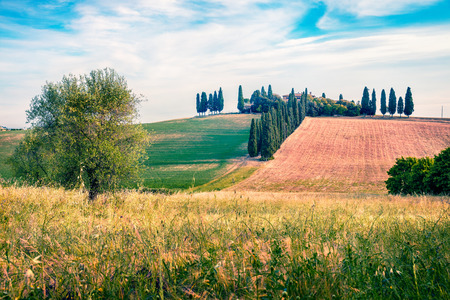 Classic Tuscan view with cypress trees. Colorful summer view of Italian countryside. Beauty of countryside concept background. Stock Photo