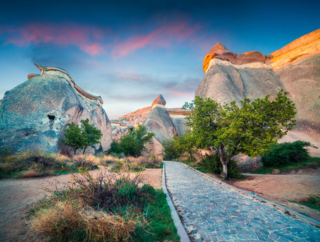 Exciting fungous forms of sandstone in the canyon near Cavusin village, Cappadocia, Nevsehir Province in the Central Anatolia Region of Turkey, Asia. Beauty of nature concept background.