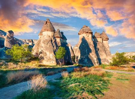 Magic fungous forms of sandstone in the canyon near Cavusin village, Cappadocia, Nevsehir Province in the Central Anatolia Region of Turkey, Asia. Beauty of nature concept background. Foto de archivo - 116551565