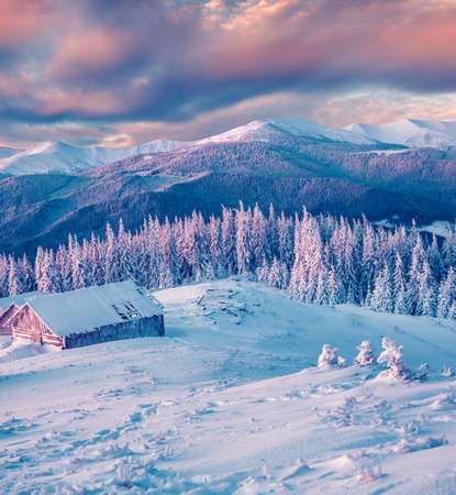Magnificent winter sunset in mountain forest with snow covered fir trees. Colorful outdoor scene, Happy New Year celebration concept. Artistic style post processed photo.
