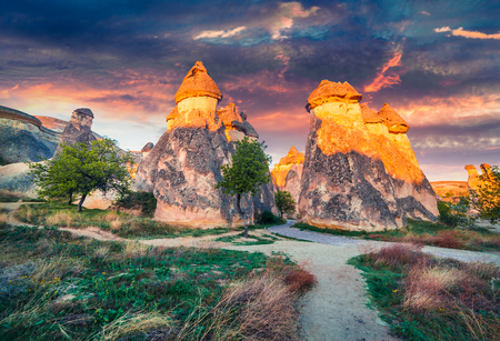 Fantastic fungous forms of sandstone in the canyon near Cavusin village, Cappadocia, Nevsehir Province in the Central Anatolia Region of Turkey, Asia. Beauty of nature concept background.