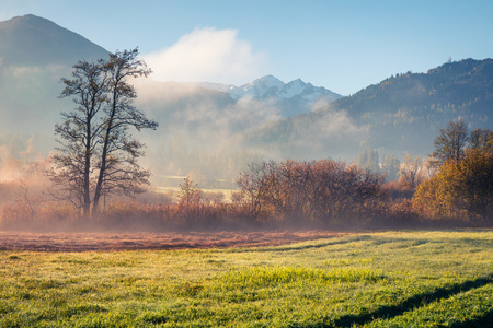 Misty morning scene near Zell lake. Gorgeous autumn view of Austrian Alps, with Grossglockner peak on background. Beauty of nature concept background. Stock Photo