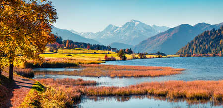 Vivid autumn panorama of Haidersee (Lago della Muta) lake with Ortler peak on background. Splendid morning view of Italian Alps, Italy, Europe. Beauty of countryside concept background.