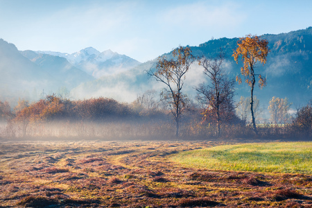 Misty morning scene near Zell lake. Splendid autumn view of Austrian Alps, with Grossglockner peak on background. Beauty of nature concept background. Foto de archivo - 116551703