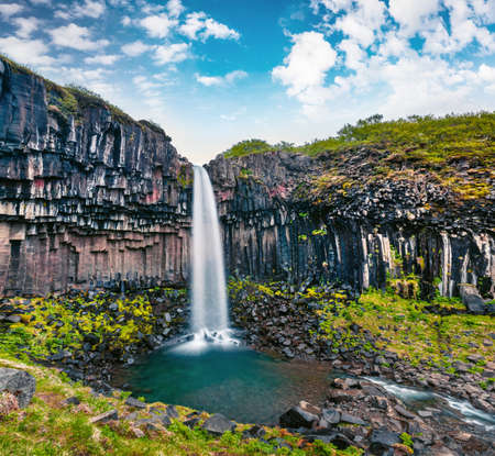 Splendid morning view of famous Svartifoss (Black Fall) Waterfall. Colorful summer scene of Skaftafell, Vatnajokull National Park, Iceland, Europe. Beauty of nature concept background.