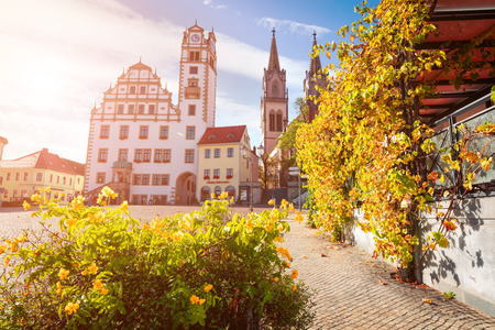 Sunny autumn view of Oschatz central square with Stadtverwaltung and St. Aegidien church. Colorful morning scene of Saxony, Germany, Europe. Traveling concept background. 스톡 콘텐츠