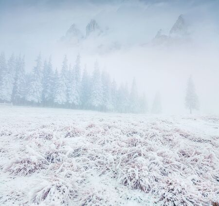 Foggy winter landscape in the moountains. Frosty outdoor scene in the snowy forest, Happy New Year celebration concept. Artistic style post processed photo. Zdjęcie Seryjne
