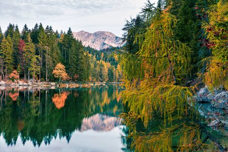 Splendid morning scene of Eibsee lake. Colorful autumn view of Bavarian Alps, Germany, Europe. Beauty of nature concept background. Zdjęcie Seryjne