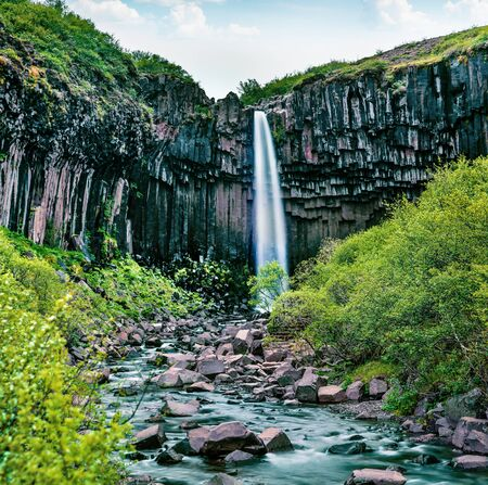 Picturasque morning view of famous Svartifoss (Black Fall) Waterfall. Great summer scene in Skaftafell, Vatnajokull National Park, Iceland, Europe. Imagens
