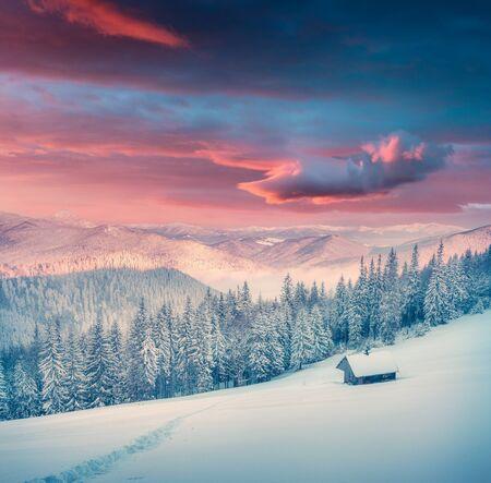 Herrlicher Wintersonnenaufgang im Bergbauernhof mit schneebedeckten Tannen. Bunte Outdoor-Szene, Happy New Year-Feierkonzept. Nachbearbeitetes Foto im künstlerischen Stil.