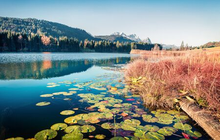 Exciting morning scene of Wagenbruchsee lake with Zugspitze mountain range on background. Beautifel autumn view of Bavarian Alps, Germany, Europe. Beauty of nature concept background.