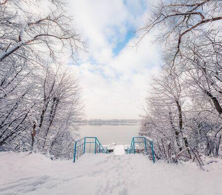 Scène d'hiver à couper le souffle du parc de la ville avec des arbres recroquevillés de neige, Ternopil, Ukraine, Europe. Vue extérieure impressionnante de la forêt, concept de célébration de bonne année.