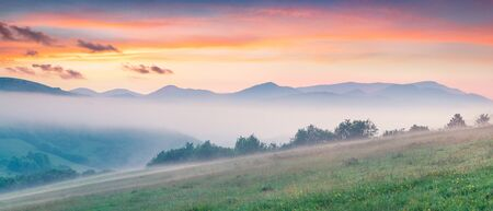 Fantastic summer sunrise in Carpathian mountains. Misty morning panorama of green mountain valley, Transcarpathian, Rika village location, Ukraine, Europe. Beauty of nature concept background.