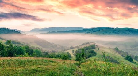 Fabulous summer sunrise in Carpathian mountains. Misty morning scene of green mountain valley, Transcarpathian, Rika village location, Ukraine, Europe. Beauty of nature concept background. Stock fotó
