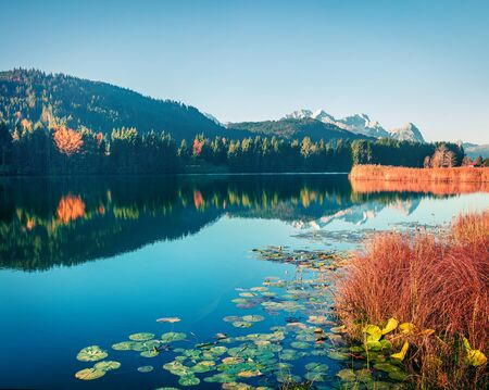 Fabulous morning scene of Wagenbruchsee lake with Zugspitze mountain range on background. Attractive autumn view of Bavarian Alps, Germany, Europe. Beauty of nature concept background. 写真素材