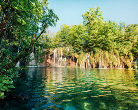Picturesque morning csene of Plitvice National Park. Sunny spring view of green forest with pure water lake and waterfall. Great countryside view of Croatia, Europe.