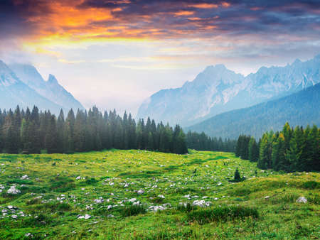 Dramatic summer view of Cresta di Enghe mountain range. Colorful morning view of Dolomite Alps, Italy, Europe. Beauty of nature concept background. Orton Effect.