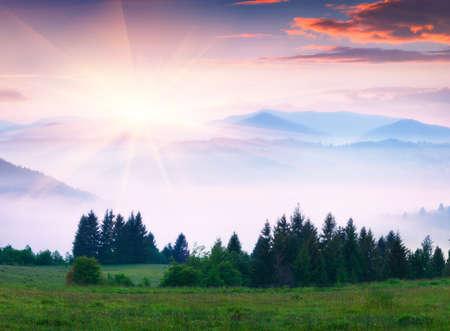 Fantastic summer sunrise in Carpathian mountains. Misty morning scene of green mountain valley, Transcarpathian, Ukraine, Europe. Beauty of nature concept background. Orton Effect.