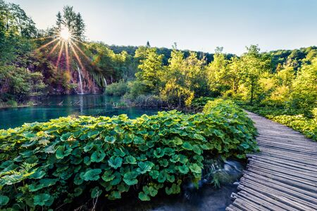 Attractive morning view of Plitvice National Park. Colorful spring scene of green forest. Beautiful countryside landscape of Croatia, Europe. Traveling concept background.