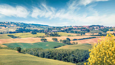 Wheat harvest in Tuscany. Typical countryside Tuscany view. Bright summer scene of Italiy, Europe. Beauty Traveling concept background. Zdjęcie Seryjne