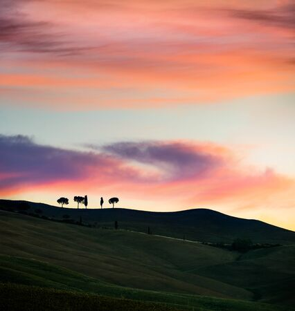Silhouettes of cypress trees in Tuscany. Dramatic spring sunrise in Italian countryside. Impressive morning scene in Italy, Europe. Beauty of nature concept background. Stock fotó