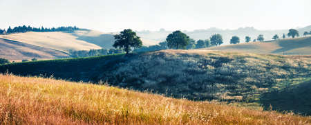 Attractive summer panorama of hills and valleys of Toscana. Picturesque morning scene of Tuscany, Italy, Europe. Beauty of nature concept background.