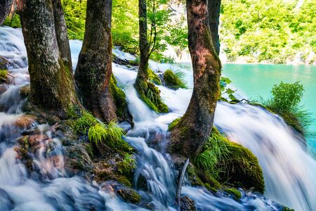 Nice morning view of Plitvice National Park. Bright spring scene of green forest with pure water waterfall. Splendid countryside landscape of Croatia, Europe. Beauty of nature concept background. Фото со стока