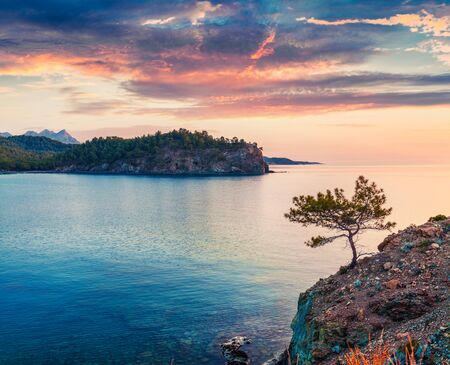 Lonely spruce tree on the edge of cliff on Mediterranean sea. Dramatic sunrise in small bay near the Tekirova village, District of Kemer, Antalya Province, Turkey. Beauty of nature concept background.