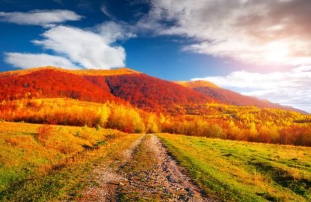 Colorful autumn landscape with old country road. Sunny morning scene in Carpathians, Ukraine, Europe. Beauty of nature concept background. Orton Effect. Stock fotó